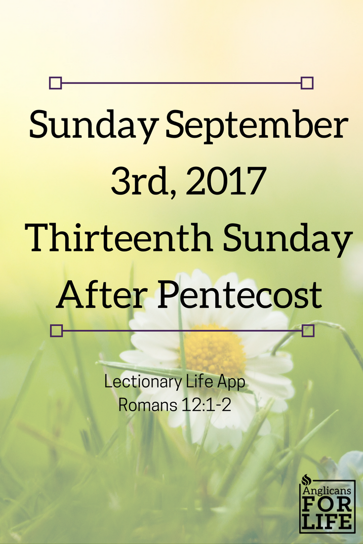 Renewal of the mind Sunday Sept 3rd Lectionary Teaching Thirteenth Sunday after Pentecost