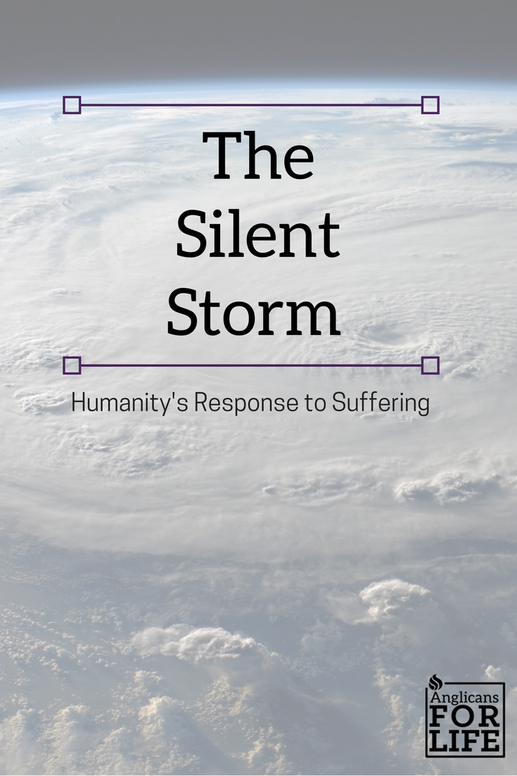 hurricane harvey, humanity's response to suffering