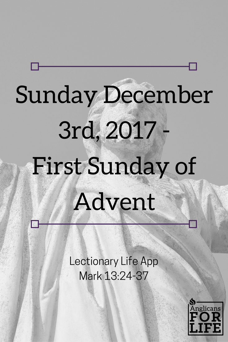 Sunday Dec 3rd Lectionary Teaching Jesus