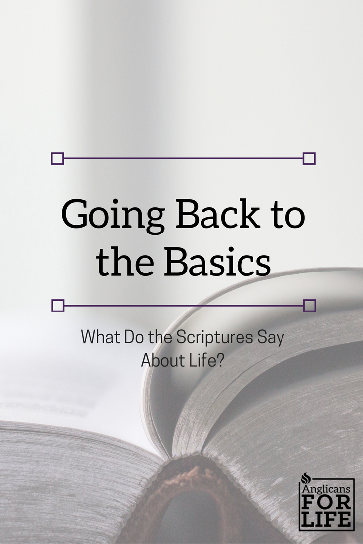Life in Scriptures blog post