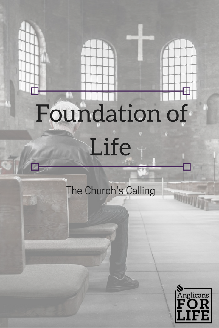 foundation of life blog post Jan 4 2018