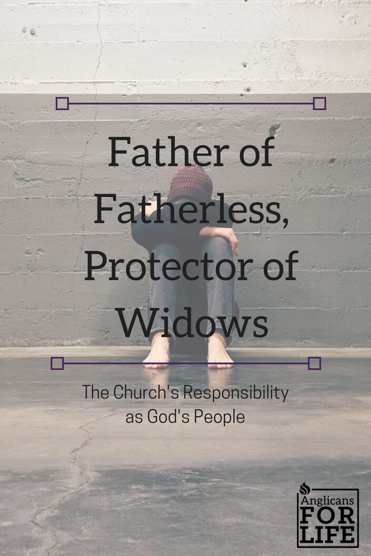 Protector of Fatherless blog post