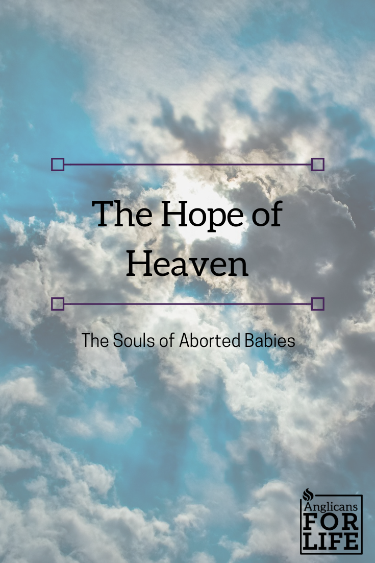 hope of heaven souls of aborted children blog post
