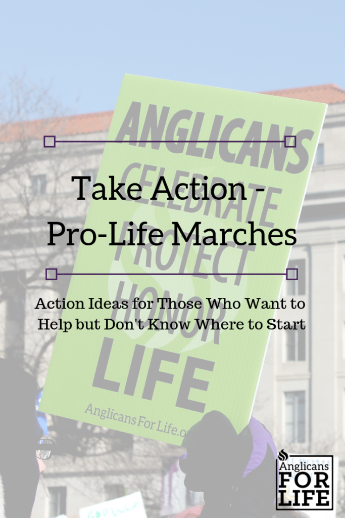 Take Action Pro-Life Marches blog post
