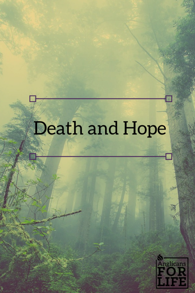 Hope and Death Breedlove blog post pin