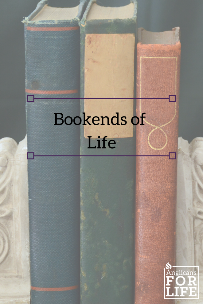 bookend of life blog pin