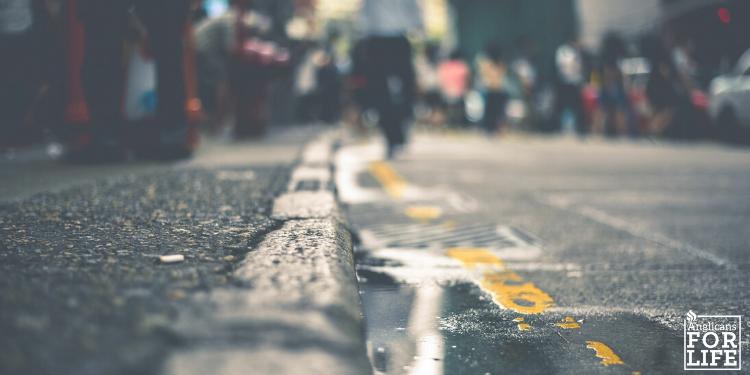 sidewalk blog
